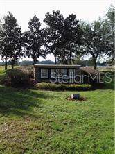 8505 Alafia Hills Drive, Plant City, FL 33567 (MLS #T3199854) :: Gate Arty & the Group - Keller Williams Realty Smart