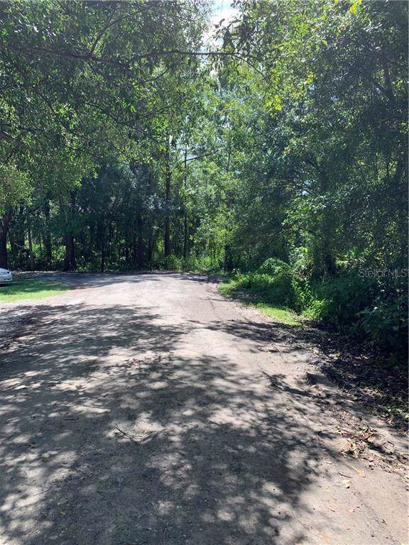 Basswood Avenue, Tampa, FL 33625 (MLS #T3200221) :: Cartwright Realty
