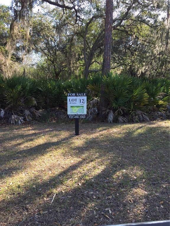 7837 Marsh Pointe Drive, Tampa, FL 33635 (MLS #T3201153) :: 54 Realty