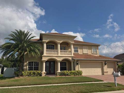 11849 Newberry Grove Loop, Riverview, FL 33579 (MLS #T3202719) :: 54 Realty