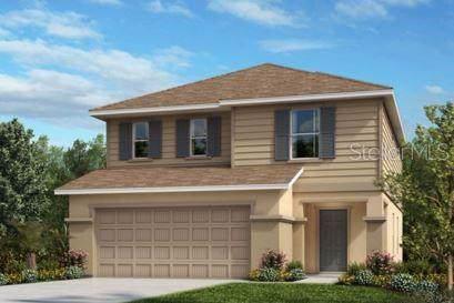 11207 Southern Cross, Gibsonton, FL 33534 (MLS #T3203201) :: Baird Realty Group