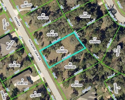 4586 Hickory Oak Drive, Brooksville, FL 34601 (MLS #T3203434) :: Alpha Equity Team