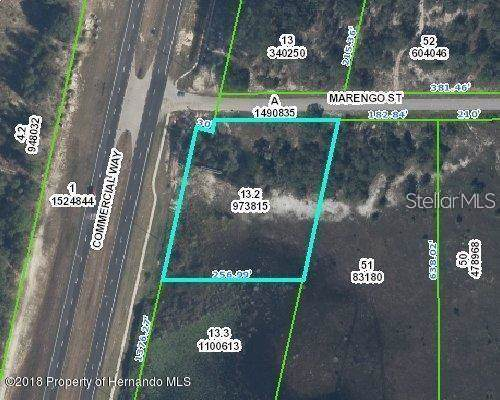 9468 Marengo Street, Weeki Wachee, FL 34613 (MLS #T3203526) :: 54 Realty