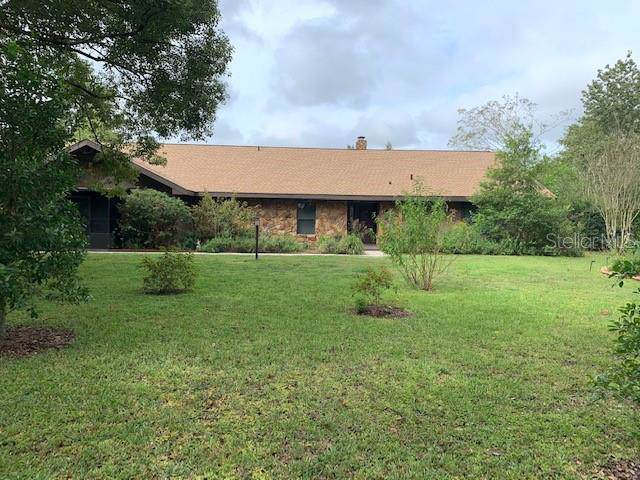 23272 Jacobson Road, Brooksville, FL 34601 (MLS #T3203669) :: Homepride Realty Services