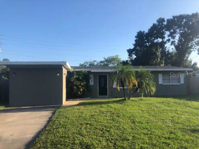 7423 Manchester Lane, Tampa, FL 33619 (MLS #T3203874) :: The Light Team