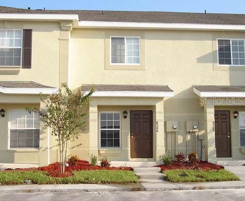 8506 Brushleaf Way, Tampa, FL 33647 (MLS #T3203925) :: 54 Realty