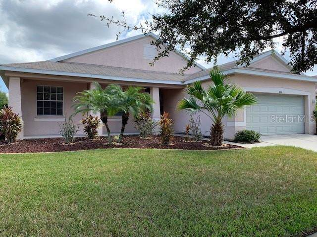 11806 Holly Crest Lane, Riverview, FL 33569 (MLS #T3204328) :: Cartwright Realty