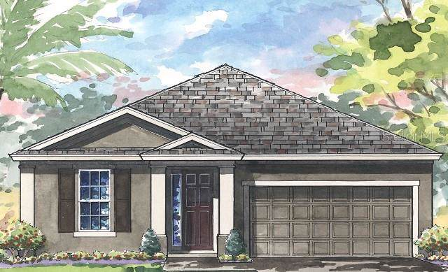 4383 Tubular Run, Land O Lakes, FL 34638 (MLS #T3204489) :: GO Realty