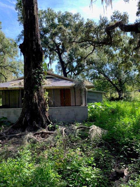 5531 Eureka Springs Road, Tampa, FL 33610 (MLS #T3204536) :: Zarghami Group