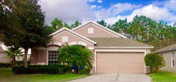 3206 Wheeling Court, Land O Lakes, FL 34638 (MLS #T3204642) :: RE/MAX CHAMPIONS