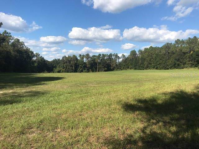 Reed Road, Dade City, FL 33523 (MLS #T3204764) :: Godwin Realty Group