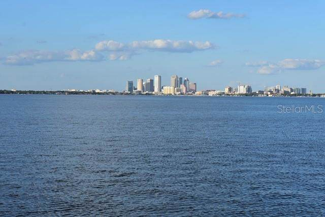 2807 W Hawthorne Road, Tampa, FL 33611 (MLS #T3204847) :: Baird Realty Group