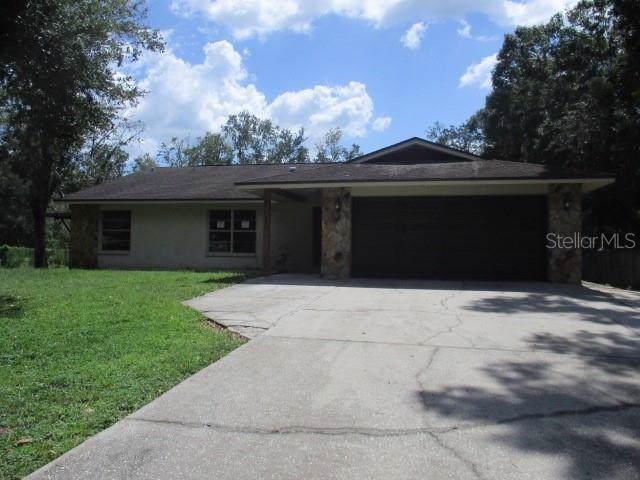 26536 Chianina Drive, Wesley Chapel, FL 33544 (MLS #T3205047) :: NewHomePrograms.com LLC