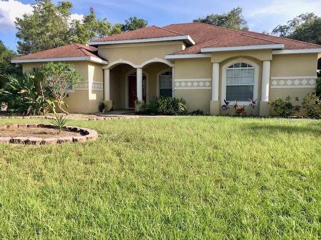 9414 Bullfrog Court, Gibsonton, FL 33534 (MLS #T3205078) :: Cartwright Realty