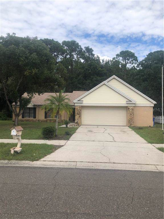 3726 Murray Dale Drive, Valrico, FL 33596 (MLS #T3205424) :: Cartwright Realty