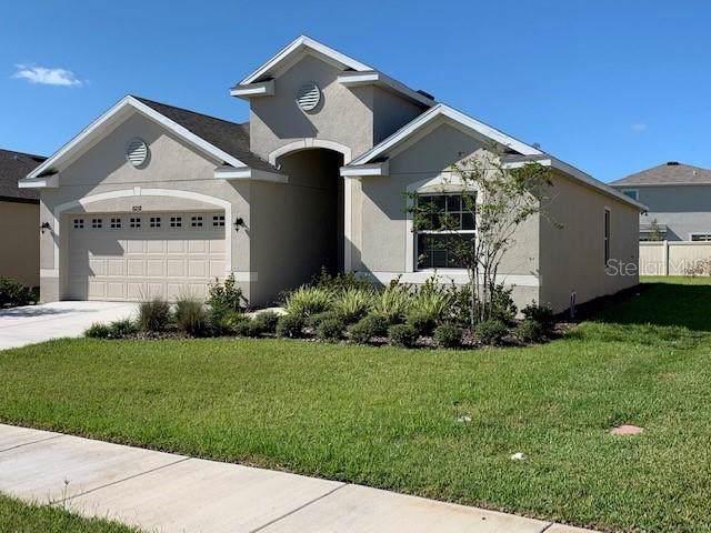 8258 Olive Brook Drive, Wesley Chapel, FL 33545 (MLS #T3205730) :: Cartwright Realty