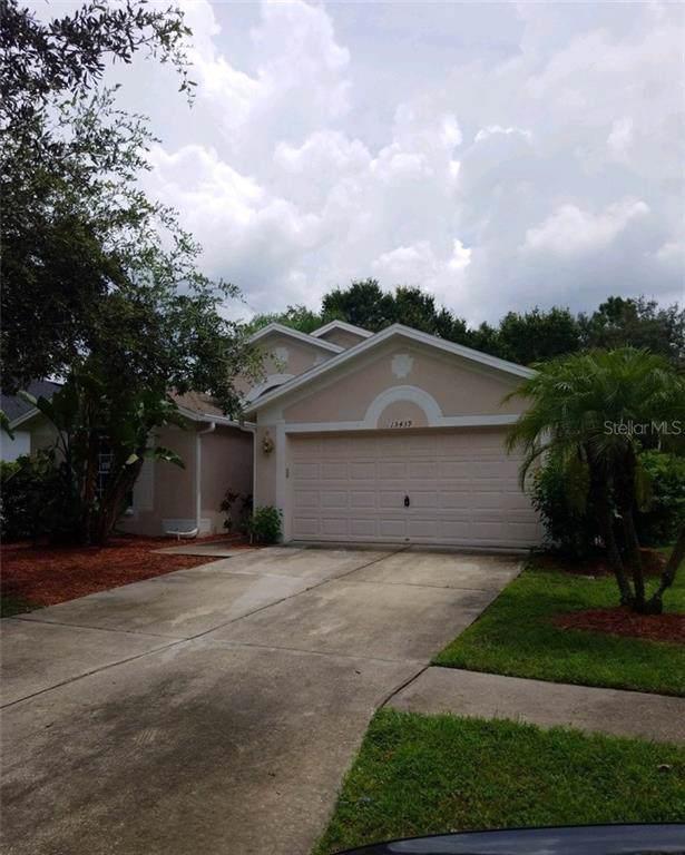 15439 Martinmeadow Drive, Lithia, FL 33547 (MLS #T3205860) :: Kendrick Realty Inc
