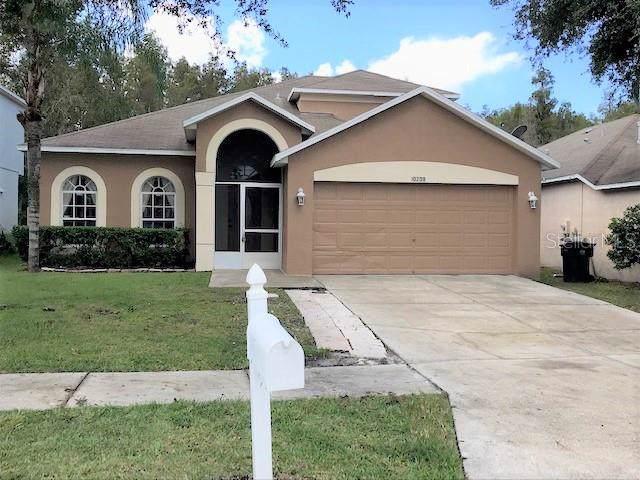 10208 Grant Creek Drive, Tampa, FL 33647 (MLS #T3206006) :: Team Bohannon Keller Williams, Tampa Properties