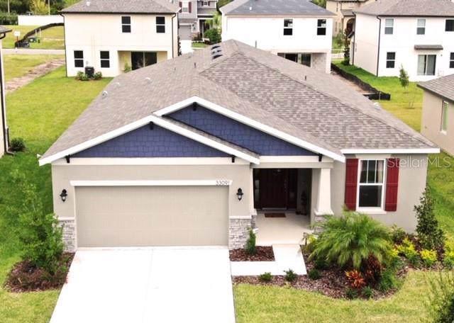 33091 Frogs Leap Lane, Wesley Chapel, FL 33545 (MLS #T3206032) :: Premier Home Experts
