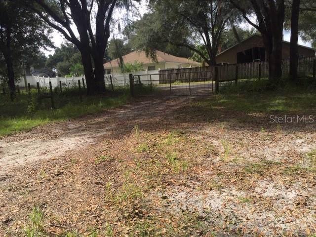 5528 Wesley Chapel Loop, Wesley Chapel, FL 33543 (MLS #T3206178) :: Premier Home Experts