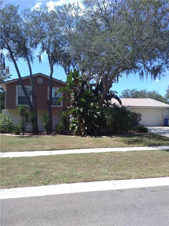 3909 Rosedale Drive, Brandon, FL 33511 (MLS #T3206830) :: 54 Realty