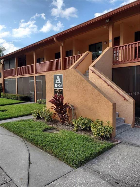 20853 Haulover Cove A4, Lutz, FL 33558 (MLS #T3208336) :: Team TLC | Mihara & Associates