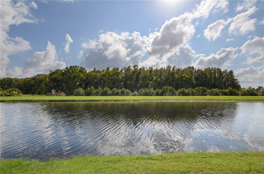 15844 Aurora Lake Circle - Photo 1