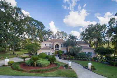 11310 Grandview Drive, Dade City, FL 33525 (MLS #T3209360) :: Team Borham at Keller Williams Realty