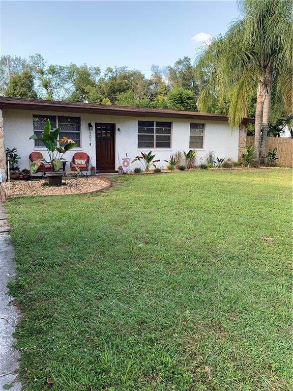 901 Briarwood Avenue, Tampa, FL 33613 (MLS #T3209722) :: Premium Properties Real Estate Services