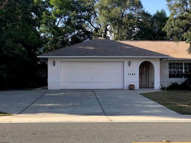 7195 Pinehurst Drive, Spring Hill, FL 34606 (MLS #T3209933) :: Team TLC | Mihara & Associates