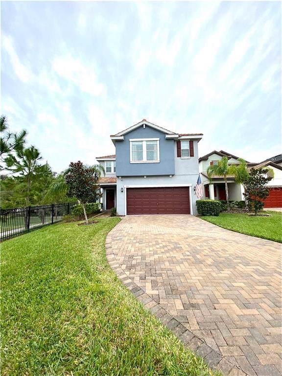 916 Terra Vista Street, Brandon, FL 33511 (MLS #T3211145) :: Team Bohannon Keller Williams, Tampa Properties