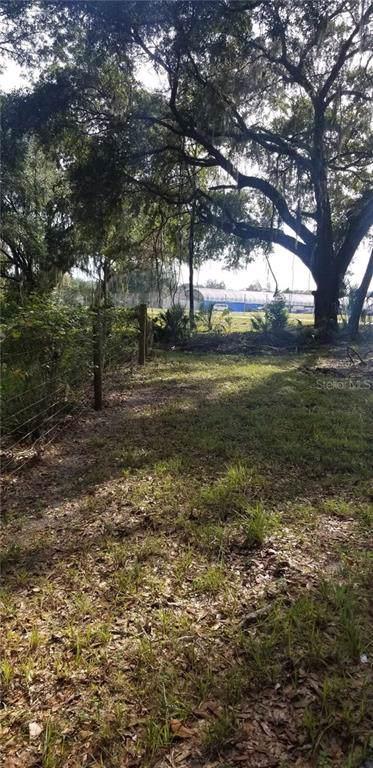 Coniglio Drive, Thonotosassa, FL 33592 (MLS #T3211248) :: RE/MAX Realtec Group