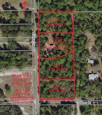 Hiawatha Road, Odessa, FL 33556 (MLS #T3211301) :: Griffin Group