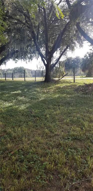 Coniglio Drive, Thonotosassa, FL 33592 (MLS #T3211320) :: Team Borham at Keller Williams Realty