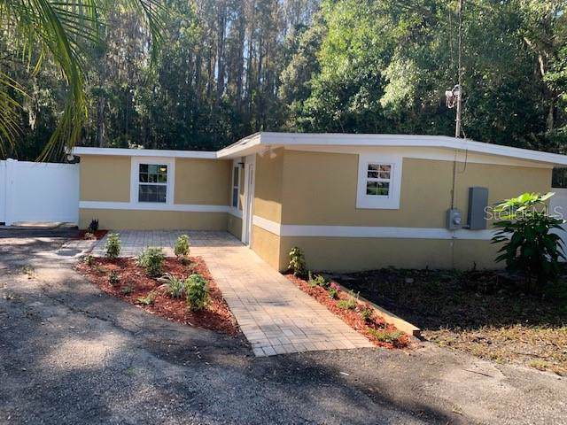 14520 Geneva Drive, Odessa, FL 33556 (MLS #T3211399) :: Team Bohannon Keller Williams, Tampa Properties