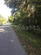 0 Budowski, Brooksville, FL 34614 (MLS #T3213080) :: Cartwright Realty