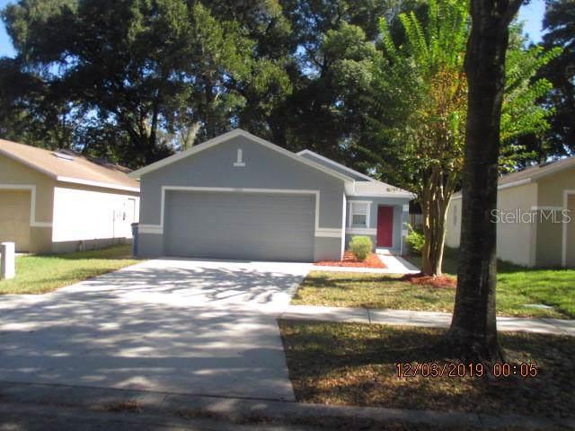 11828 Mango Groves Boulevard, Seffner, FL 33584 (MLS #T3213459) :: The Duncan Duo Team