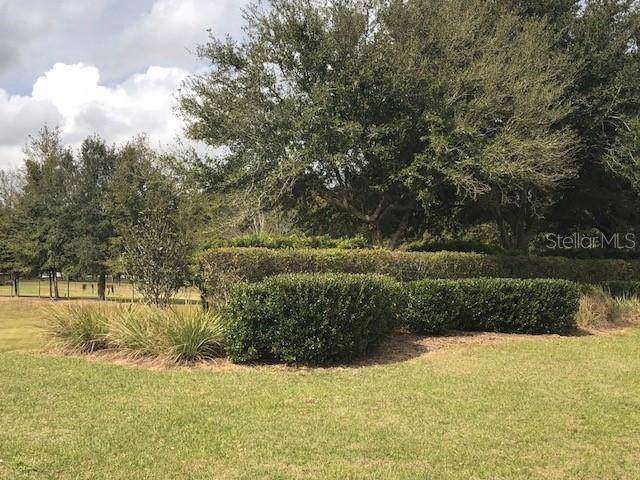 35940 Ramsey Ridge Drive, Dade City, FL 33523 (MLS #T3213467) :: Premium Properties Real Estate Services