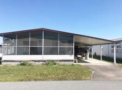 5250 Montego Drive, Zephyrhills, FL 33541 (MLS #T3213579) :: The Duncan Duo Team