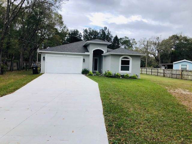 15623 Willowdale Road, Tampa, FL 33625 (MLS #T3215130) :: The Duncan Duo Team