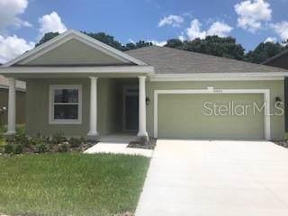 12424 Brick Cobblestone, Riverview, FL 33579 (MLS #T3215328) :: The Robertson Real Estate Group
