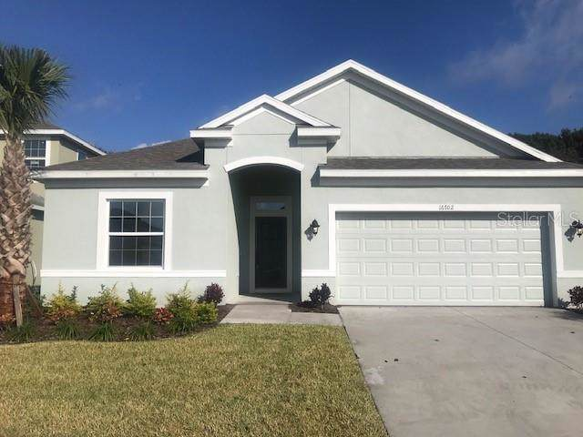 16702 Mooner Plank Circle, Wimauma, FL 33598 (MLS #T3216443) :: Team Bohannon Keller Williams, Tampa Properties