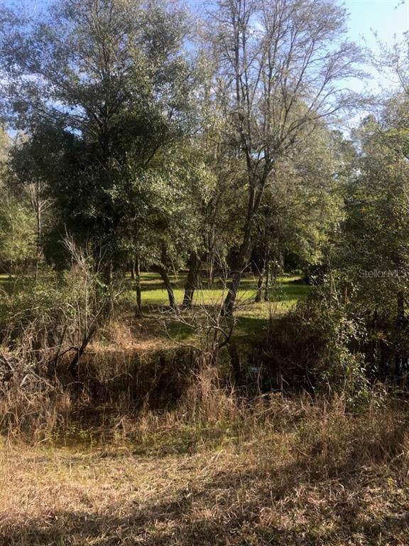 Lot 4 Wishing Stone Street, Webster, FL 33597 (MLS #T3217330) :: Cartwright Realty