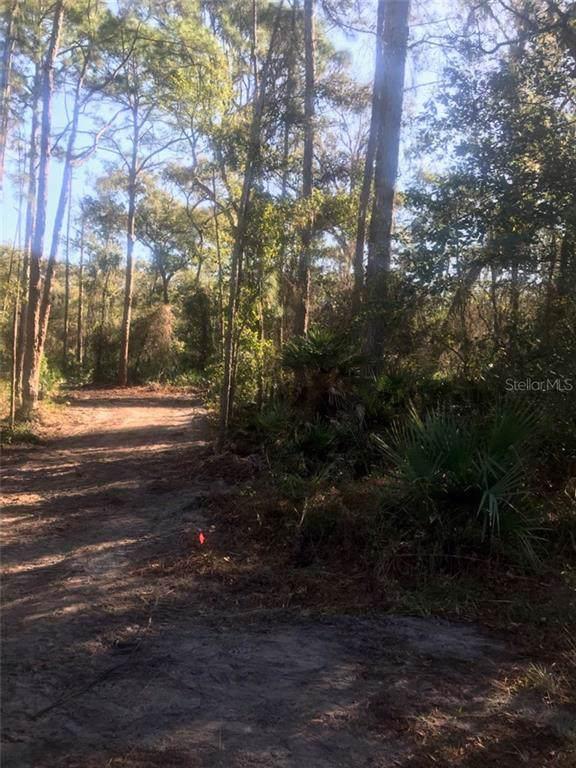 Lot 6 Wishing Stone Street, Webster, FL 33597 (MLS #T3217340) :: Cartwright Realty