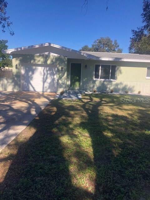 1509 Nebraska Avenue, Palm Harbor, FL 34683 (MLS #T3218222) :: Cartwright Realty