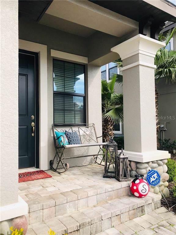 4814 Wandering Way, Wesley Chapel, FL 33544 (MLS #T3218897) :: Team Bohannon Keller Williams, Tampa Properties