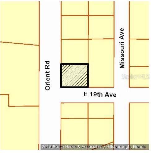 2901 Orient Road, Tampa, FL 33619 (MLS #T3219027) :: Cartwright Realty