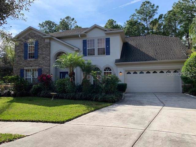 16116 Colchester Palms Drive, Tampa, FL 33647 (MLS #T3220153) :: GO Realty