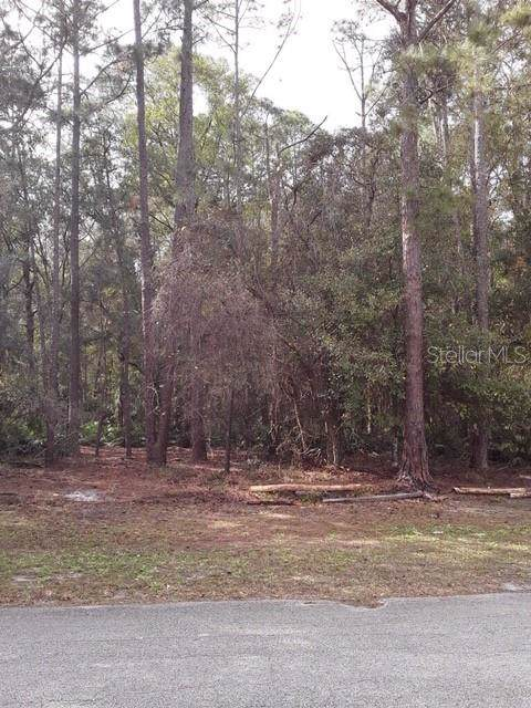 Address Not Published, Wesley Chapel, FL 33544 (MLS #T3220340) :: Team Pepka