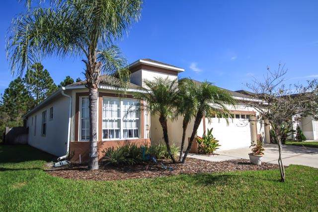 2206 Pantucket Drive, Wesley Chapel, FL 33543 (MLS #T3220653) :: Team Bohannon Keller Williams, Tampa Properties